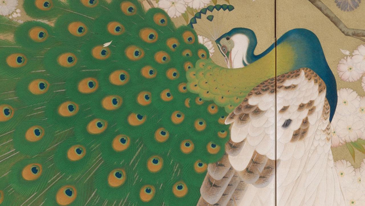 'Peacocks and Cherry Tree' by Imazu Tatsuyuki
