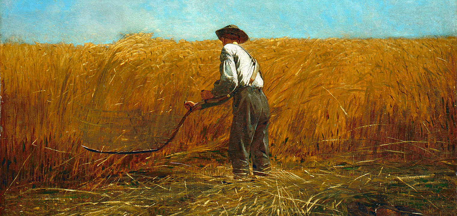 Image of a painting by Winslow Homer of a man reaping a wheat field.