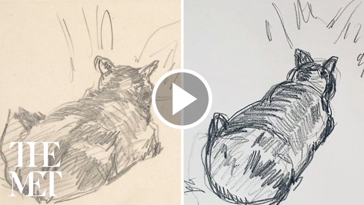 Two sketches of cats laying down.